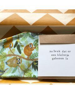 Brievenbus (Kraam) cadeaupakket broekje(s)