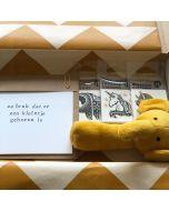Brievenbus (kraam) cadeaupakket vanaf