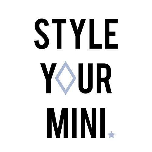 Style Your Mini